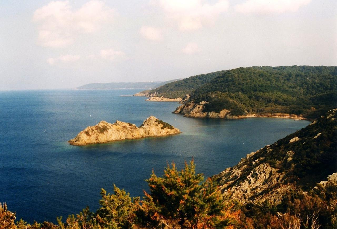Port-Cros  - Île RASCAS vue de la pointe MILADOU