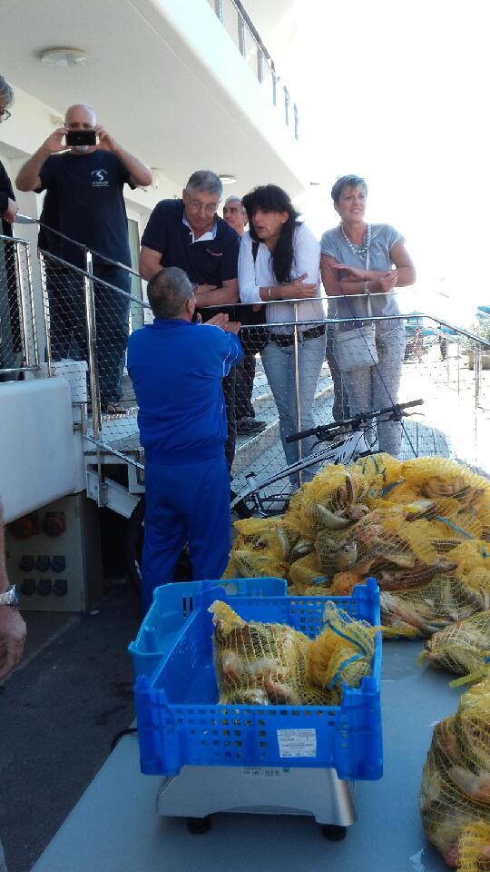 Concours de pêche  - la pesée